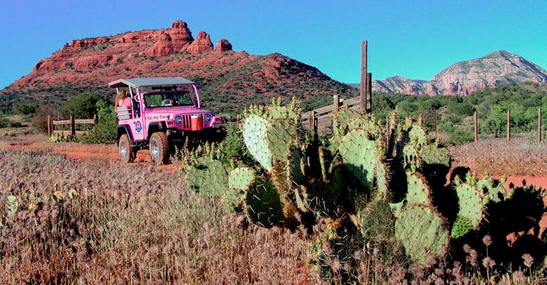 Pink Jeep: Diamond Back Gulch [Adult]